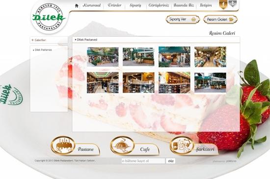 web site - resim galeri